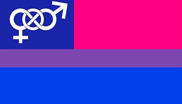 Que significa la bandera bisexual